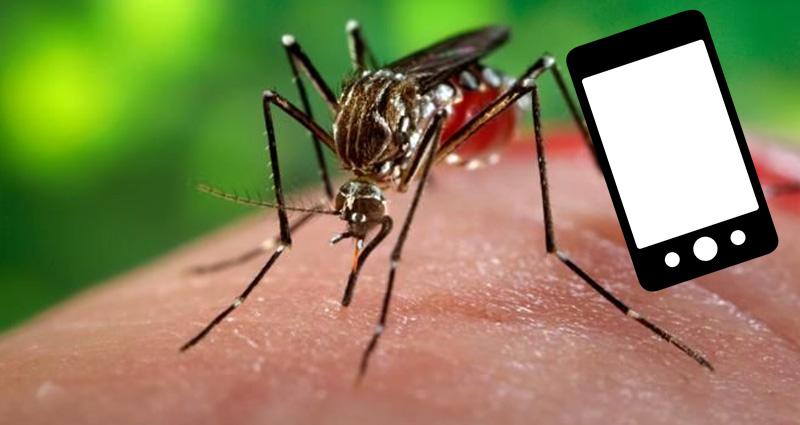 anti mosquito chikungunya tratamiento aplicaciones smartphone